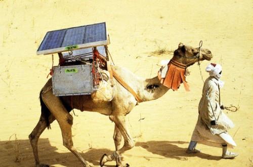 solarcamel-lead01