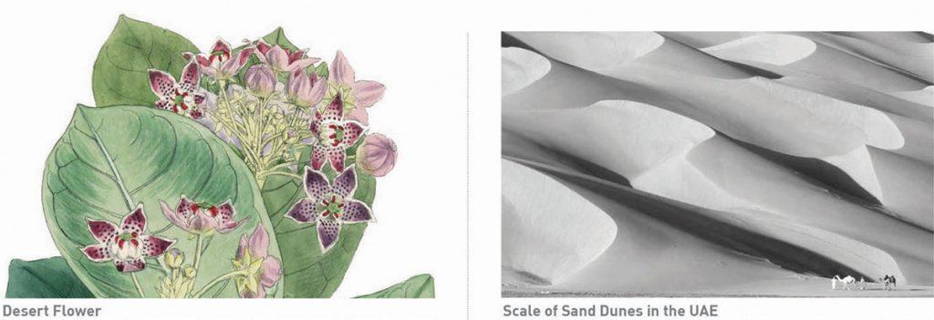 The Flowering Desert, LAGI 2019 Abu Dhabi