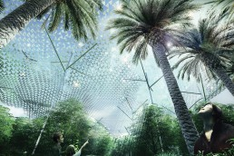 Nadi Forest, LAGI 2019 Abu Dhabi
